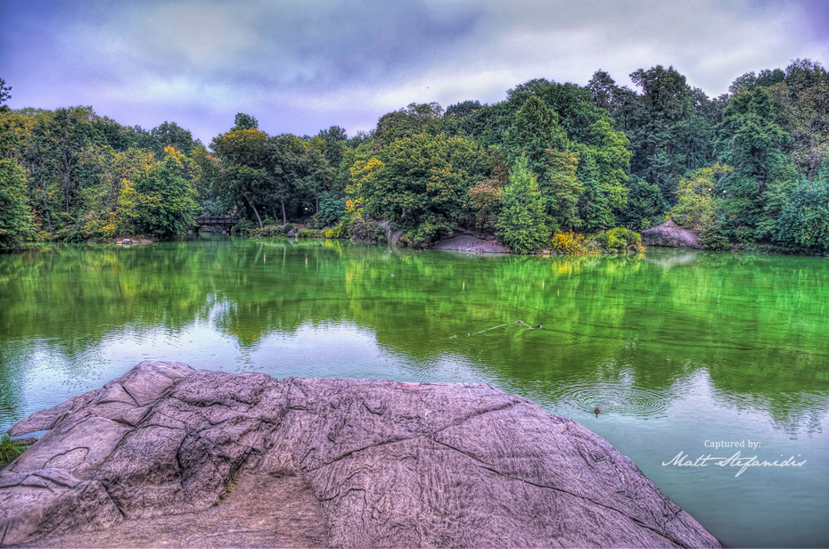 central-park-7-nyc-hdr-photography